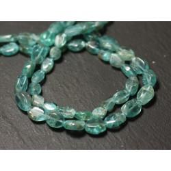 10pc - Perles de Pierre - Apatite Olives 7-9mm - 8741140011618