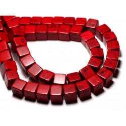20pc - Perles Turquoise Synthèse reconstituée Cubes 8mm Rouge Bordeaux - 8741140009226