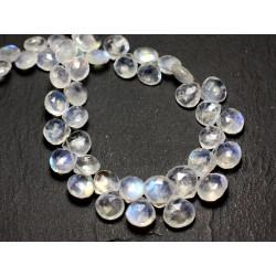 1pc - Perle de Pierre - Pierre de Lune arc en ciel Goutte Facettée 7-9mm - 8741140008786