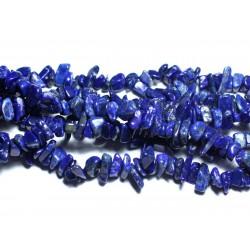 50pc - Perles de Pierre - Lapis Lazuli Rocailles Chips 5-11mm - 8741140008267