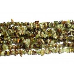 20pc - Perles de Pierre - Grenat Vert Chips Nuggets 5-8mm 4558550019929