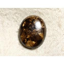 Cabochon de Pierre - Bronzite Ovale 21mm N17 - 4558550087058
