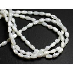 30pc - Perles Nacre Blanche Irisée - Riz Fuseau Olive 6x4mm - 4558550082305