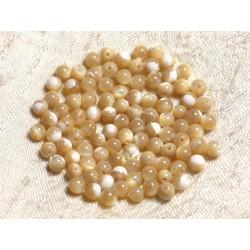 20pc - Perles de Nacre Beige Irisée Boules 4mm 4558550003584