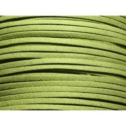5 mètres - Cordon Lanière Suédine 3x1.5mm Vert anis 4558550004703