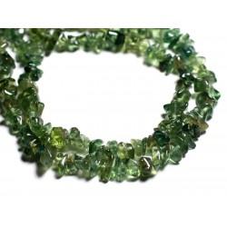 20pc - Perles de Pierre - Diopside Verte Rocailles Chips 5-9mm 4558550014733