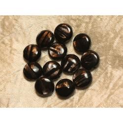 2pc - Perles de Pierre - Hypersthène Palets 12mm 4558550020437