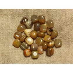 10pc - Perles de Pierre - Bois Fossile Nuggets 7-10mm - 4558550020925