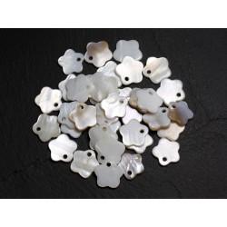 10pc - Breloques Pendentifs Nacre Blanche Fleurs 12mm 4558550021571
