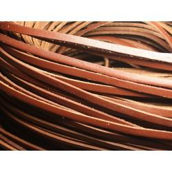 1 mètre - Cordon Lanière Cuir Véritable Marron 5 x 2 mm 4558550023711