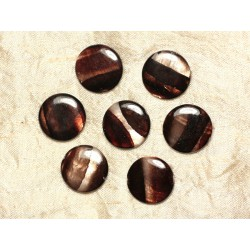 5pc - Perles de Nacre Palets 20mm Marron Zébré 4558550031648