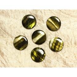 5pc - Perles de Nacre Palets 20mm Vert Zébré 4558550031723
