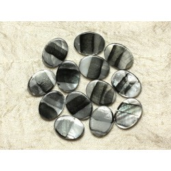 5pc - Perles de Nacre Ovales 20x15mm Noires Argentées Zébrées 4558550032690