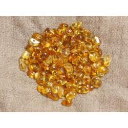 15pc - Perles d'ambre naturelle Miel - Rocailles 5-8mm - 4558550037350