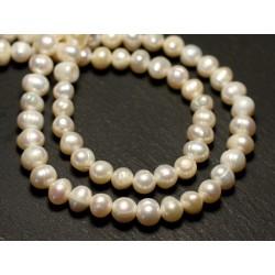 Fil 36cm 60pc env - Perles culture eau douce Boules 5-7mm Blanc irisé