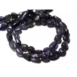 Fil 33cm 37pc env - Perles de Pierre - Iolite Cordiérite Olives 7-14mm - 8741140012592