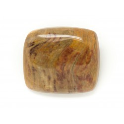 N12 - Cabochon de Pierre - Bois Fossile Rectangle 32x19mm - 8741140006270