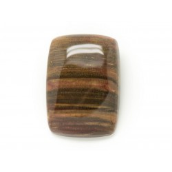 N13 - Cabochon de Pierre - Bois Fossile Rectangle 26x23mm - 8741140006287