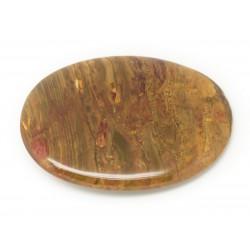 N20 - Cabochon de Pierre - Bois Fossile Ovale 45x25mm - 8741140006355
