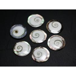 1pc - Perle Oeil de Shiva Sainte Lucie Ovale 18-23mm - 4558550036353